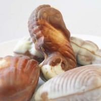 Guylian Belgian Chocolate Seashells Review
