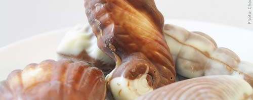 Guylian Belgian Chocolate Seashells Review